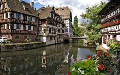 Fleuriste à Strasbourg